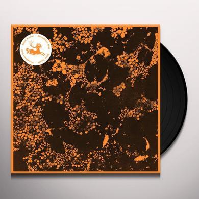 Downliners Sekt SILENT ASCENT Vinyl Record