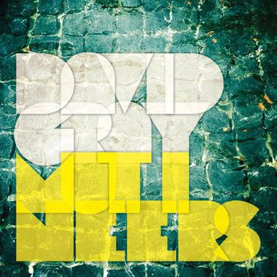 David Gray MUTINEERS Vinyl Record