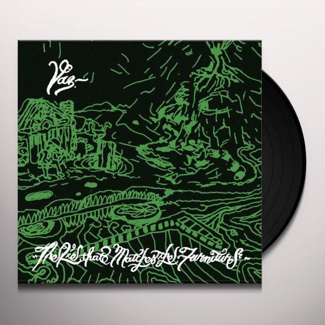 Vaz LIE THAT MATCHES THE FURNITURE Vinyl Record