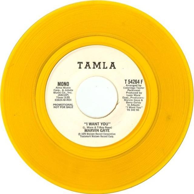 Marvin Gaye I WANT YOU Vinyl Record