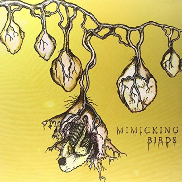 TREE RING merch