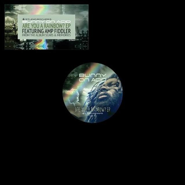 Bunny On Acid ARE YOU A RAINBOW? Vinyl Record