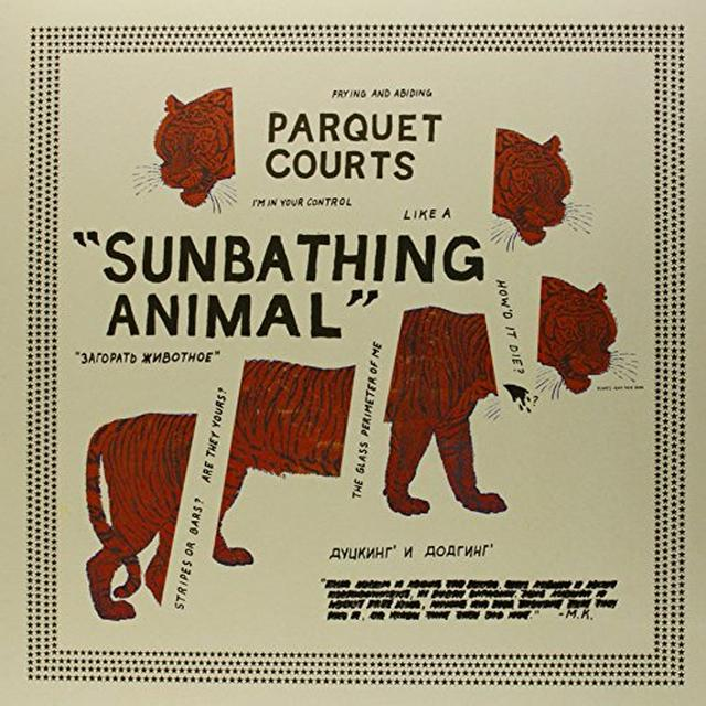 Parquet Courts SUNBATHING ANIMAL Vinyl Record