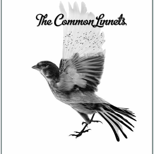 THE COMMON LINNETS Vinyl Record
