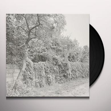 Seth Schwarz JABEL Vinyl Record