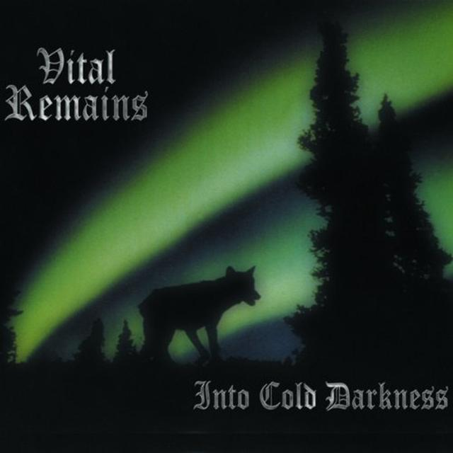 Vital Remains INTO COLD DARKNESS Vinyl Record