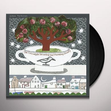 James Yorkston CELLARDYKE RECORDING Vinyl Record - UK Import