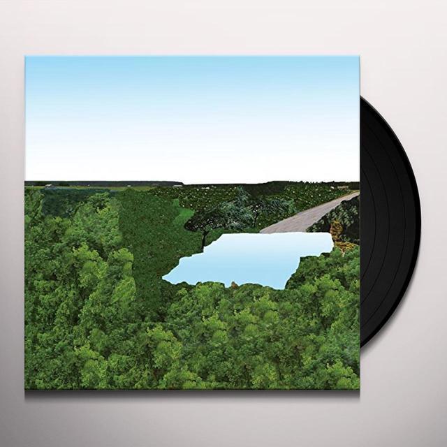 POLLOT Vinyl Record