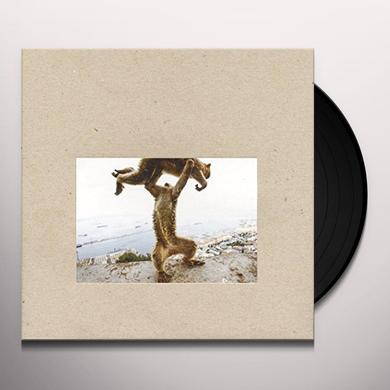 Shellac DUDE INCREDIBLE Vinyl Record