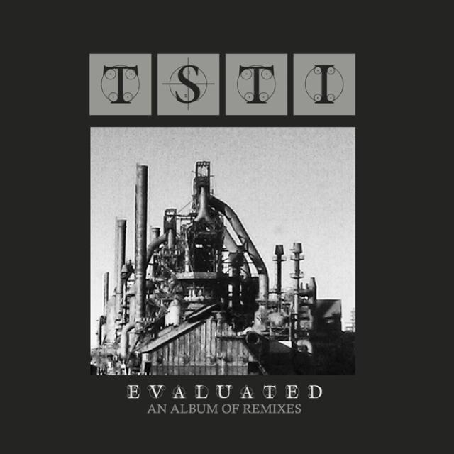 TSTI EVALUATED: ALBUM OF REMIXES Vinyl Record
