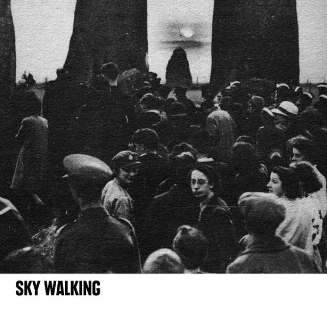 SKY WALKING Vinyl Record