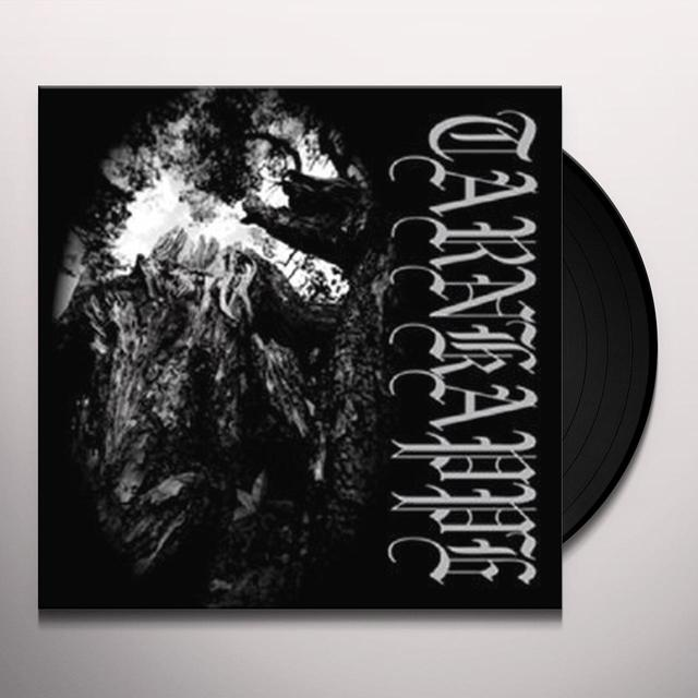 TARNKAPPE TUSSEN HUN EN DE ZON Vinyl Record