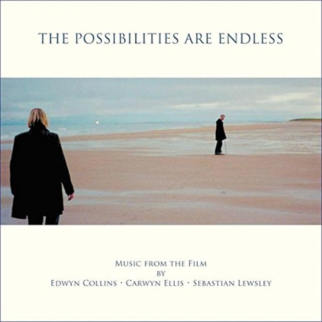 POSSIBILITIES ARE ENDLESS / O.S.T.