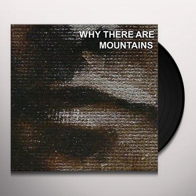 Cymbals Eat Guitars WHY THERE ARE MOUNTAINS Vinyl Record