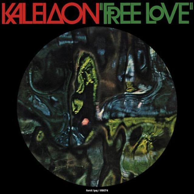 KALEIDON FREE LOVE Vinyl Record