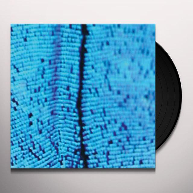 2562 NEW TODAY Vinyl Record