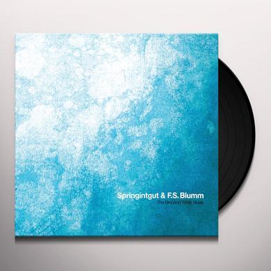 SPRINGINTGUT / F.S. BLUMM BIRD & WHITE NOISE Vinyl Record
