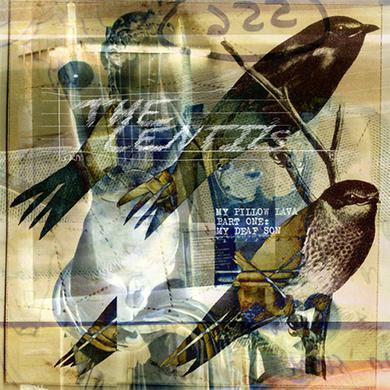 The Lentils MY PILLOW LAVA PT 1: MY DEAF SON Vinyl Record