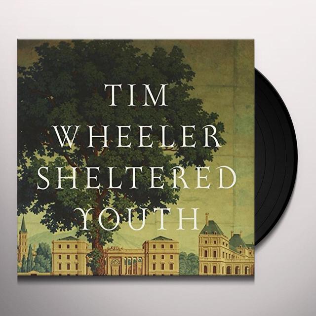 Tim Wheeler SHELTERED YOUTH (EP) Vinyl Record - UK Import