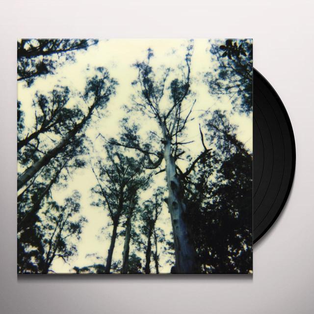 FRIGHTENING LIGHTS (UK) (Vinyl)