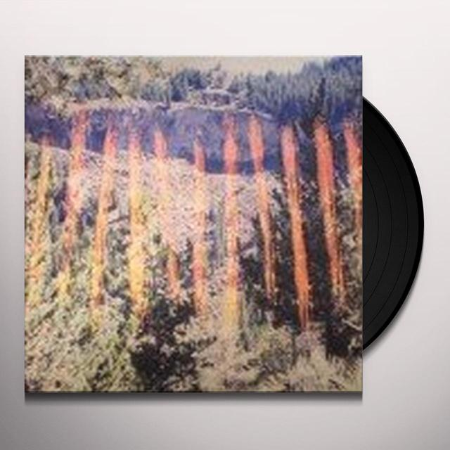 FaltyDL ///I\II\\\\ Vinyl Record