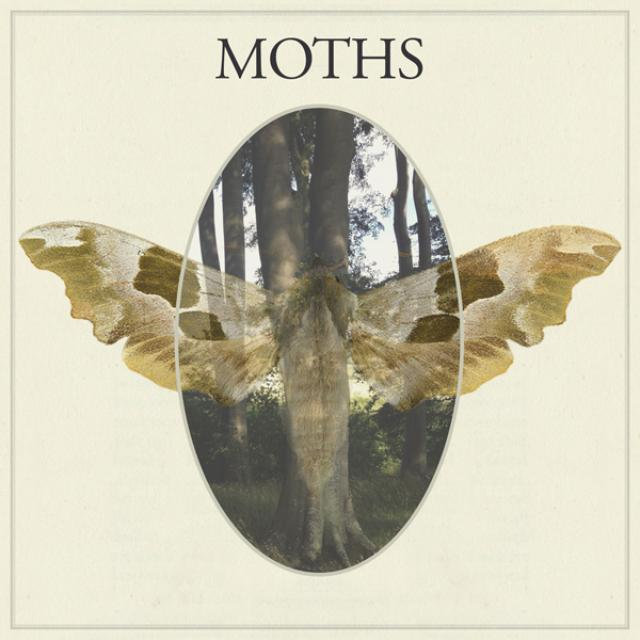 MOTHS Vinyl Record
