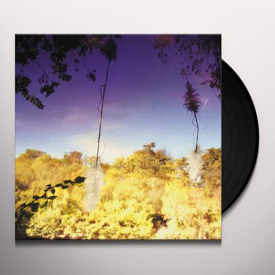 DISCO ANTI NAPOLEON ASCENT Vinyl Record