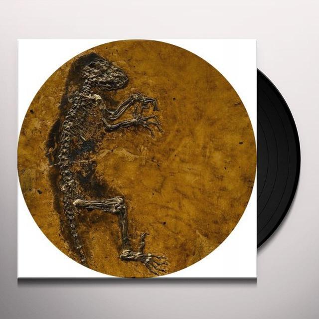 SSSE IDA Vinyl Record