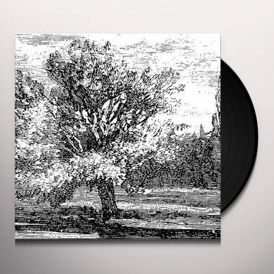 JS REDUCTION 2 Vinyl Record