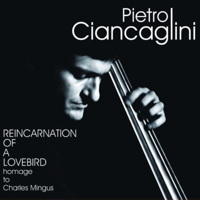 Enzo Pietropaoli merch
