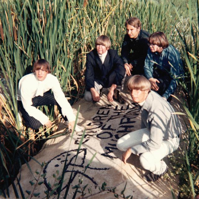 CHILDREN OF THE MUSHROOM Vinyl Record