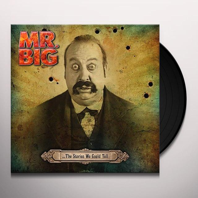 MR. BIG STORIES WE COULD TELL Vinyl Record