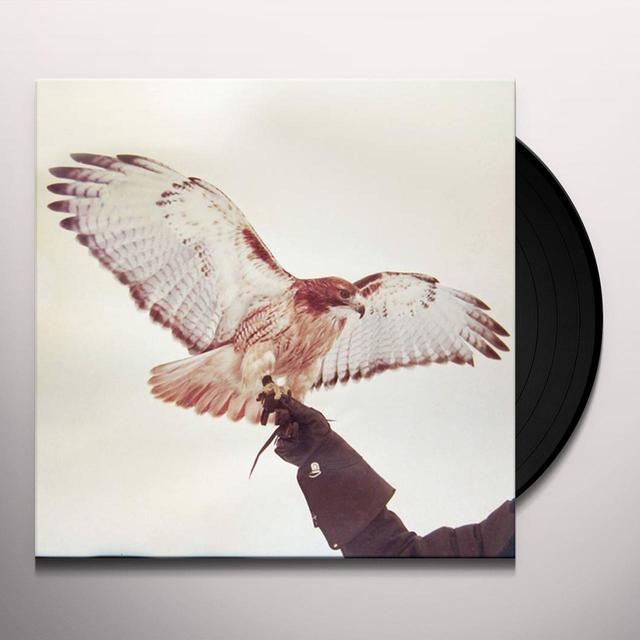 Jm Airis WILD BIRDS Vinyl Record