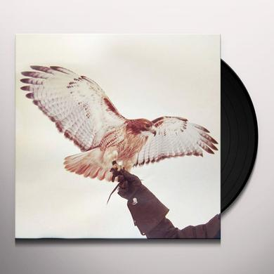 Jm Airis WILD BIRDS Vinyl Record