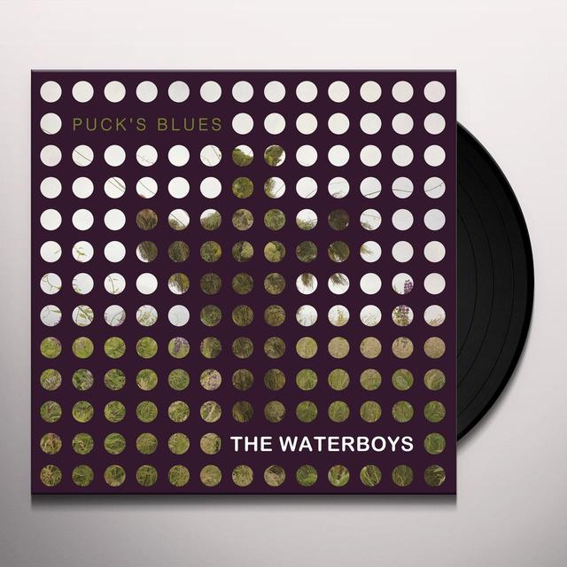 The Waterboys PUCK'S BLUES Vinyl Record