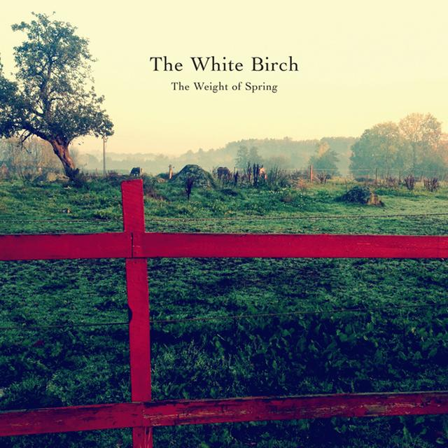 The White Birch