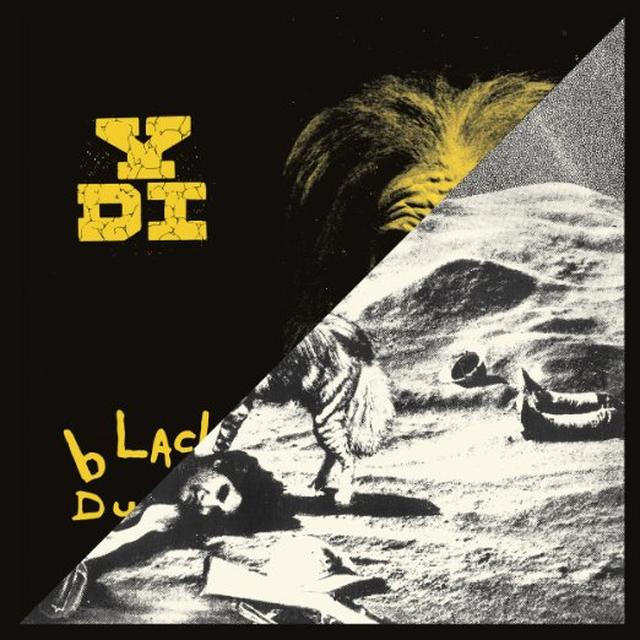 YDI A PLACE IN THE SUN / BLACK DUST Vinyl Record