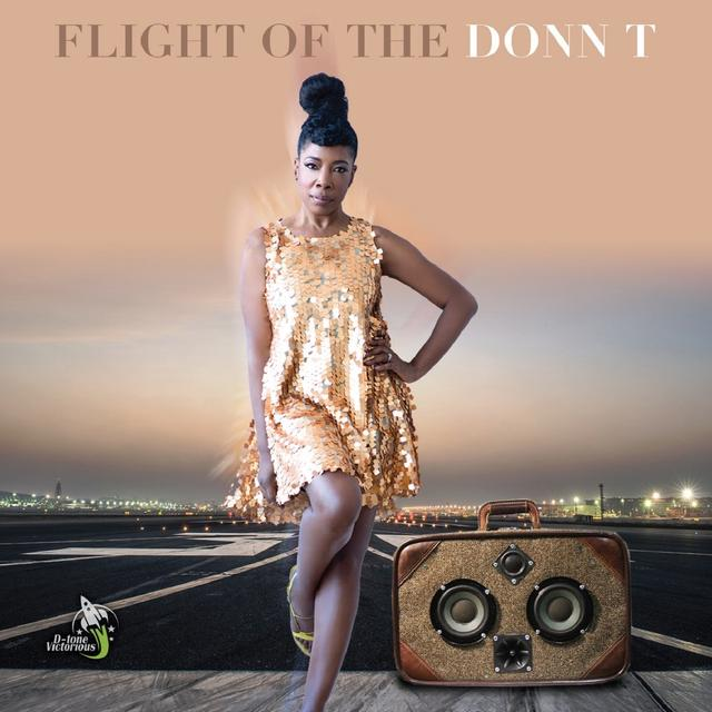 FLIGHT OF THE DONN T Vinyl Record
