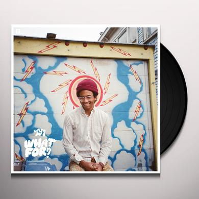 Toro Y Moi WHAT FOR Vinyl Record - Digital Download Included