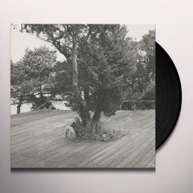 Borrowed Identity & Mechanical Soul Brother CAPS & CHORDS Vinyl Record