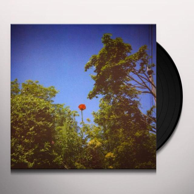 Benoît Pioulard SONNET Vinyl Record