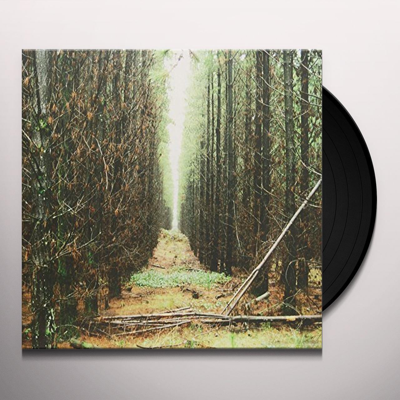 Basement Colourmeinkindness Vinyl Hostage Calm Basement