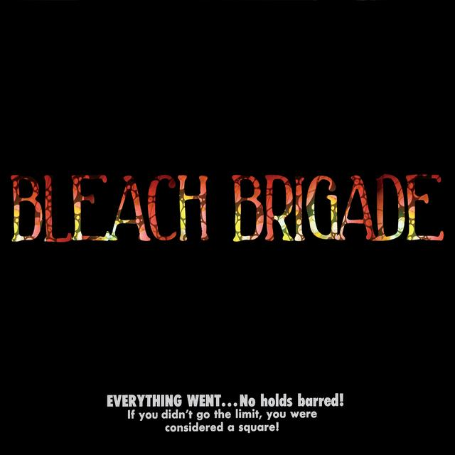 We Are Hex BLEACH BRIGADE Vinyl Record