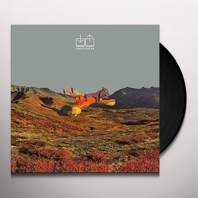 FUNKSTORUNG Vinyl Record