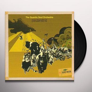 QUANTIC SOUL ORC STAMPEDE Vinyl Record - UK Import