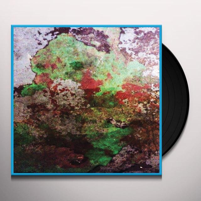 LST TH DUO Vinyl Record