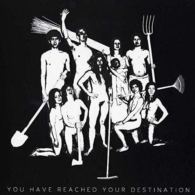 Asian Women On The Telephone YOU HAVE REACHED YOUR DESTINATION Vinyl Record