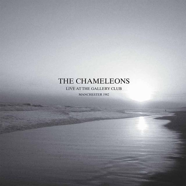 The Chameleons LIVE AT THE GALLERY CLUB Vinyl Record - UK Release