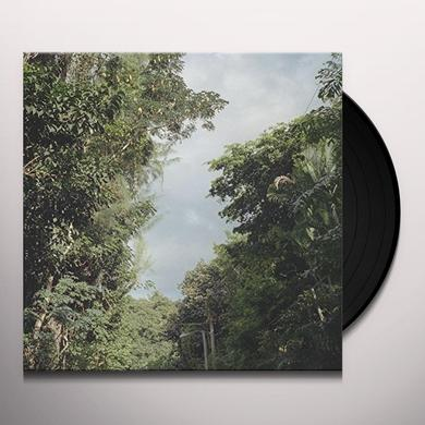 Zac Nelson NEW ONCE Vinyl Record