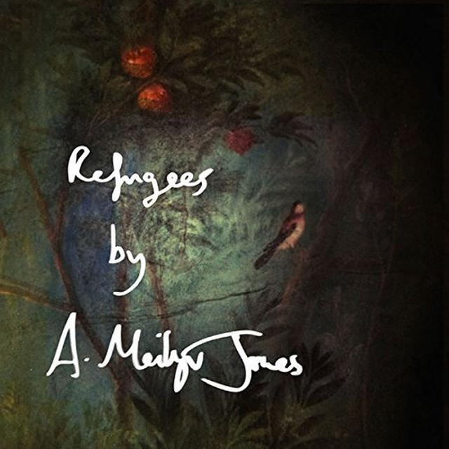 Meilyr Jones REFUGEES/BIRDS Vinyl Record